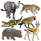 image of hippopotamus  - set with african animals - JPG
