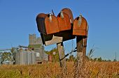 three rusty  mailboxes