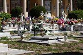 Campo Verano Cemetery