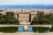 Palazzo Pitti With Florence In The Background