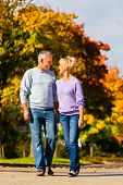 senior couple, Man and woman, having a walk in autumn or fall outdoors, the trees show colorful foli