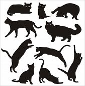 stock photo of cat-tail  - black and white Vector Silhouettes of cats - JPG