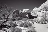 Arches At Arches
