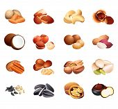 Calorie Table Nuts And Seeds