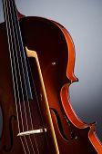 Violing against the dark background
