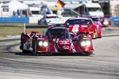 Sebring, FL - Mar 13, 2014:  The Speedsource Mazda takes to the track on Continental tires for a pra