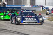 Sebring, FL - Mar 15, 2014:  The Michael Shank Ford EcoBoost Need For Speed car races through the tu