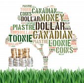 Canadian Growing Savings Concept With Tag Cloud On Green Grass With Coins Under Tree