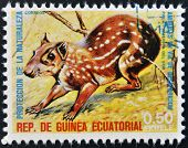 EQUATORIAL GUINEA - CIRCA 1974: Stamp printed in Guinea shows Lowland paca South America