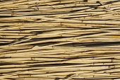 Background made of reeds.