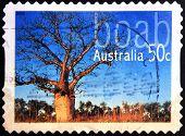 AUSTRALIA - CIRCA 2005: stamp printed in Australia shows boab circa 2005