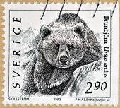 SWEDEN - CIRCA 1993: A stamp printed in Sweden shows Grizzly Bear Ursus Arctos circa 1993