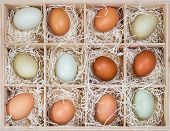 Colorful chicken eggs in crate