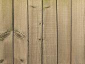 Background wood panel fence