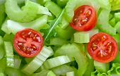 Salad With Celery And Tomatoes