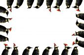 Penguin Christmas Frame