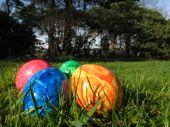 Easter Eggs In Garden