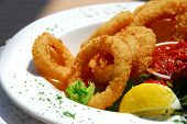 Fried calamari with sauce