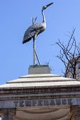 picture of temperance  - Temperance Stork Bronze MemorialPennsylvania Avenue Washington DC - JPG