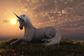 stock photo of workhorses  - The fabled creature laying on a hilly knoll at sunset - JPG