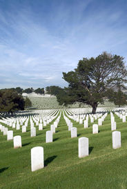 picture of headstones  - Headstones and Flags at American National Military Cemetery - JPG