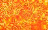 Royal Hawaiian Background