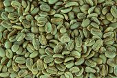 green coffee beans, close-up.