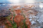 Hot Spring Flowing In Yellowstone Lake