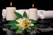 Spa Concept Of Passiflora Flower, Green Leaf With Drop, Towels And Candles On Zen Stones In Ripple R