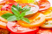 Colorful Tomato Slices With Green Branch Of Mint, Fresh Organic Food