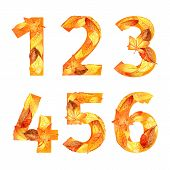 font of autumn leaves. number. watercolor.