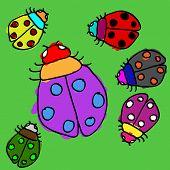 Child Ladybugs