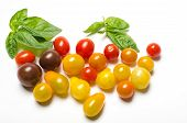 Cherry tomatoes and basil leaves on white background