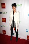 LOS ANGELES - SEP 13:  Diane Warren at the Voices On Point at Century Plaza Hotel on September 13, 2014 in Century City, CA