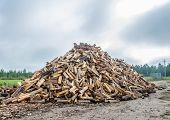 A large pile of split firewood.