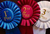 Three Winners Rosettes
