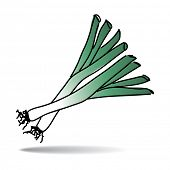 Freehand drawing leek icon - vector eps 10 illustration
