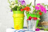 Bouquet of colorful flowers and fresh cherries in decorative buckets, on chair, on light wall backgr