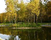 Autumn, Little Island