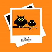 Instant photo with cute owls. Happy Halloween card. Flat design