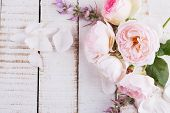 Postcard With Elegant  Flowers And Empty Tag For Your Text