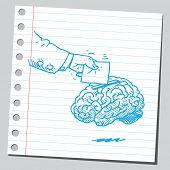 Vote box brain