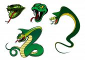 stock photo of king cobra  - Green cartoon angry snake characters for animal - JPG