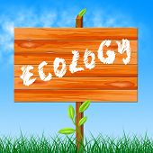 Eco Ecology Represents Earth Friendly And Conservation