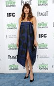 LOS ANGELES - MAR 01:  Lake Bell arrives to the Film Independent Spirit Awards 2014  on March 01, 20
