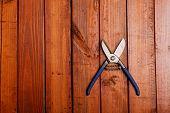 Scissors On Wood Background