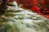 Lime Stone Water Falls And Red Leaves Plant