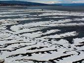 Serpentine Ice On Beach