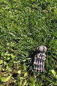 Fake Foot Bone Halloween Decoration On Grass