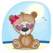 pic of cute bears  - Cute bear girl in sunglasses on a beach - JPG